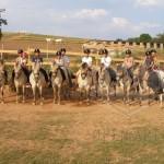 Jezdecká dílna: Život v sedle (2.)