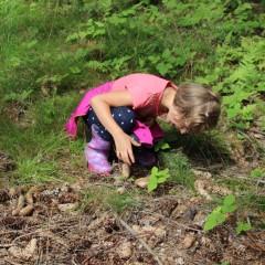 …co se stane, když výtvarná dílna vyrazí do lesa?