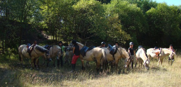 Jezdecká dílna I. pro jezdce začátečníky