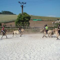Jezdecká dílna I. pro mírně pokročilé jezdce