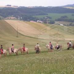 Jezdecká dílna: Život v sedle (1.)