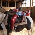 Jezdecká dílna IV. pro nejmenší jezdce začátečníky
